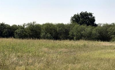 308 S AVENUE B, Haskell, TX 79521 - Photo 1