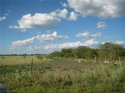 LOT 10 NE CR 1060, RICE, TX 75155 - Photo 1