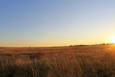 TRACT 2 WILEMON ROAD, Maypearl, TX 76064 - Photo 2
