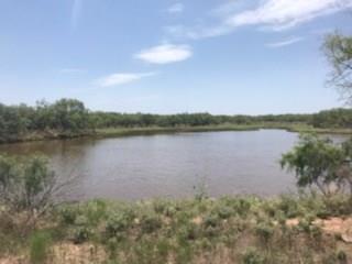 TBD CR 454, Throckmorton, TX 76483 - Photo 1