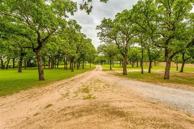 3216 LIVE OAK RD, Santo, TX 76472 - Photo 2
