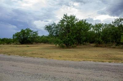 TBD CR 221 ROAD, Breckenridge, TX 76424 - Photo 2