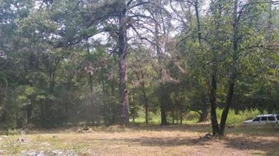 10911 SHEEP RD, Pittsburg, TX 75686 - Photo 2