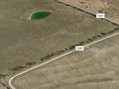 LOT 2 COUNTY ROAD 1091, Celeste, TX 75423 - Photo 2