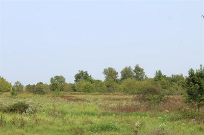 12.106 AC COUNTY ROAD 4502, Commerce, TX 75496 - Photo 2