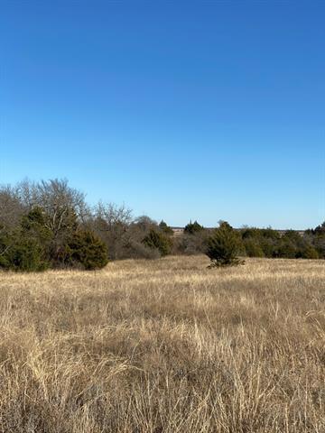 TBD10 BLEDSOE, Gunter, TX 75058 - Photo 1