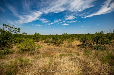 TBD 7 COUNTY ROAD 184, Ovalo, TX 79541 - Photo 2