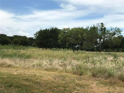 17022 TRAILWOOD DR, Whitney, TX 76692 - Photo 2