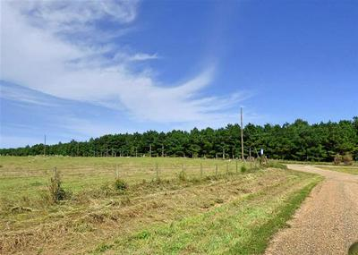 TRACT A CR 3317 CONCORD ROAD, Omaha, TX 75571 - Photo 2