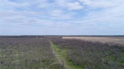 1631 COUNTY ROAD 217, Winters, TX 79567 - Photo 2