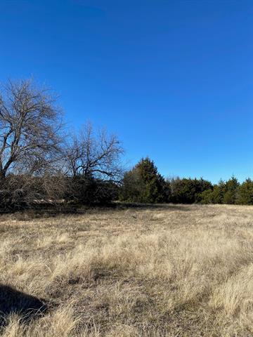TBD10 BLEDSOE, Gunter, TX 75058 - Photo 2