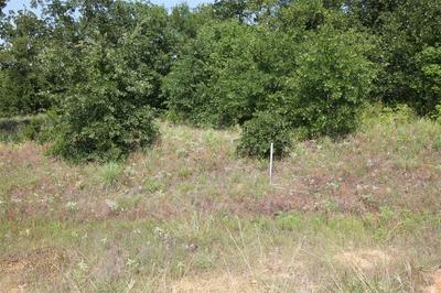 LOT 414 SUNSET BAY POINTE COURT, Chico, TX 76431 - Photo 2
