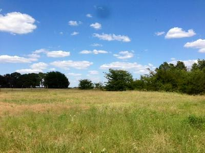 691 VZ COUNTY ROAD 3501, Wills Point, TX 75169 - Photo 2