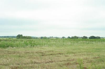 TRACT 3 W TRUCE ROAD, Jacksboro, TX 76458 - Photo 2
