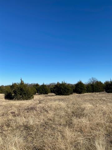 TBD8 BLEDSOE, Gunter, TX 75058 - Photo 1