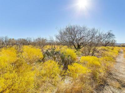 0000 COUNTY RD 323, Baird, TX 79504 - Photo 2