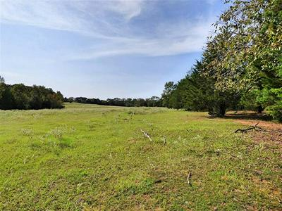 TRACT B CR 3317 CONCORD ROAD, Omaha, TX 75571 - Photo 1