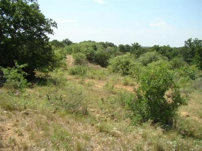 35 TRK1 CO ROAD 104, Cisco, TX 76437 - Photo 2