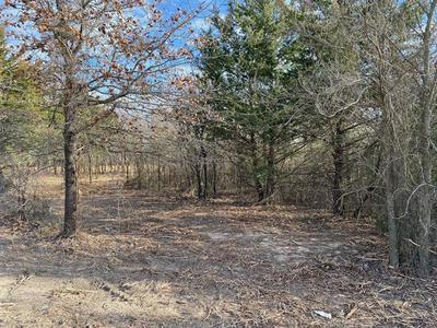 TBD CR 118 LOT 2, Whitesboro, TX 76273 - Photo 1