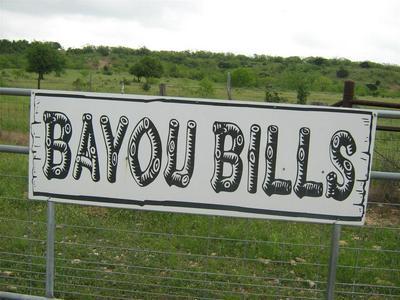 2584 HWY. 36 W., Baird, TX 79501 - Photo 2