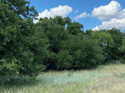 TBD FM 2231, Breckenridge, TX 76424 - Photo 2