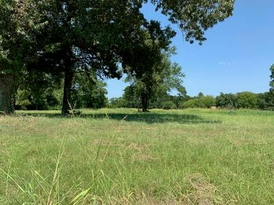 TBD HILL AVENUE, Pittsburg, TX 75686 - Photo 1