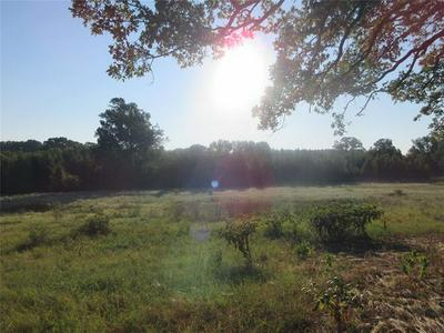 TBD COUNTY ROAD 1236, Quitman, TX 75783 - Photo 2