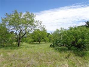 L378 THREE FORKS CROSSING, Chico, TX 76431 - Photo 2