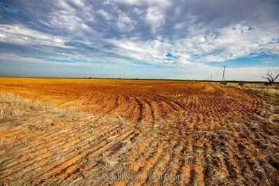 00 COUNTY ROAD 495, Hawley, TX 79525 - Photo 2