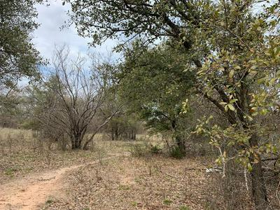 TBD BEENE CREEK TRAIL, SPRINGTOWN, TX 76082 - Photo 1