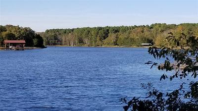 LOT 211 WATERS EDGE DRIVE, Larue, TX 75770 - Photo 1