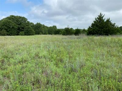 50 AC HWY 287 ACCESS ROAD, Bowie, TX 76230 - Photo 2
