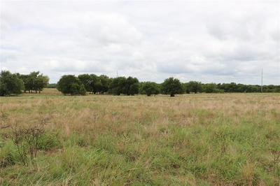 10 AC FM 2737, Lone Oak, TX 75453 - Photo 1