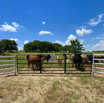 003 ROCK SPRINGS SCHOOL ROAD, Nocona, TX 76255 - Photo 1