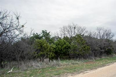 000TBD OAK, Buffalo Gap, TX 79508 - Photo 2