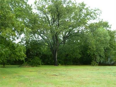 400 W FRANKLIN ST, Alvord, TX 76225 - Photo 2