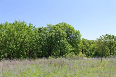 02 CLEARWATER DRIVE, Poolville, TX 76487 - Photo 2
