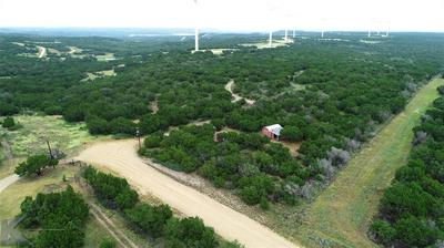 1097 COUNTY ROAD 656, Ovalo, TX 79541 - Photo 2