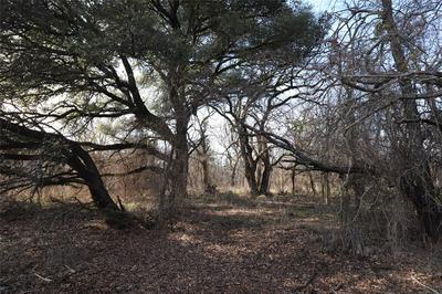 XXX COUNTY ROAD 366, May, TX 76857 - Photo 2