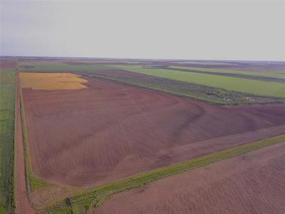 240 ACRES CR 427, Rule, TX 79547 - Photo 2