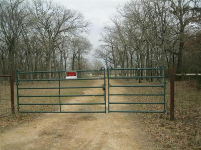 TBD CR 3536, Saltillo, TX 75478 - Photo 1