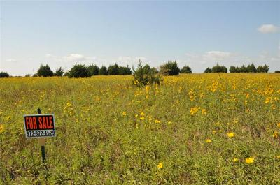 10ACRES CEDAR RIDGE COURT, Farmersville, TX 75442 - Photo 1