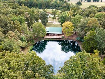 TBD COUNTY ROAD 16800, Pattonville, TX 75468 - Photo 1