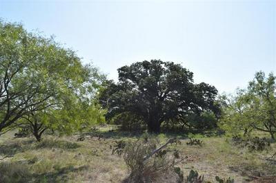 9999 HIGHWAY 153, Coleman, TX 76834 - Photo 2