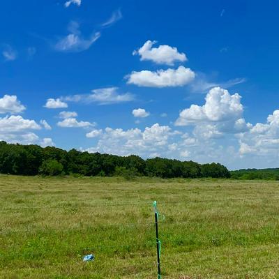 001 ROCK SPRINGS SCHOOL ROAD, Nocona, TX 76255 - Photo 2