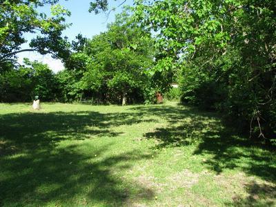371 N US HIGHWAY 281, Evant, TX 76525 - Photo 2