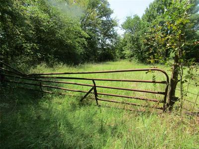 3341 COUNTY ROAD 3341, Sulphur Springs, TX 75482 - Photo 1