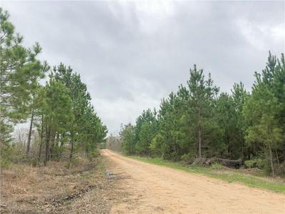 00 CR 4450, Avery, TX 75554 - Photo 2