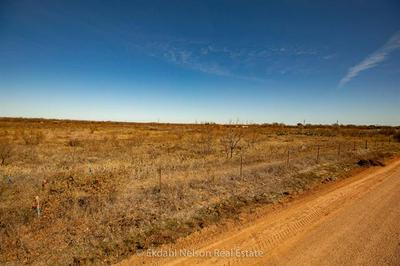 TBD COUNTY ROAD 498, Anson, TX 79501 - Photo 2