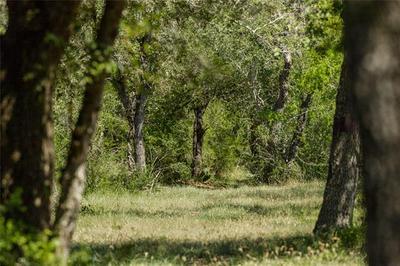 1776 FM 1351, Goliad, TX 77963 - Photo 1